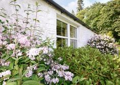 Cosy Cottages - Craigadam Cottage