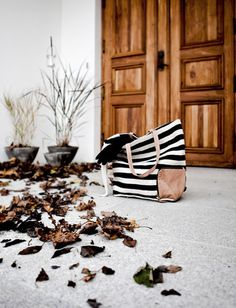 Convoy #white #black #wood #and #bag
