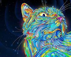 CROTCHBAT #cat