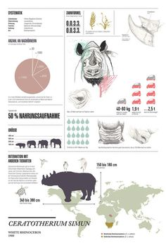 http://www.behance.net/gallery/BEHIND-THE-UNKNOWN/3522439 #cryptozoology #rhinoceros #infographics #calendar #design #graphic