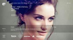 DMIG2011.jpg 450×250 pixels #eyes #website #photography #blue #layout #hexagon