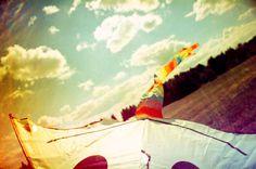 A Photo by tb - Lomography #summer #lomo