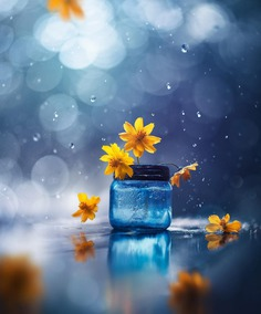 Whimsical and Dreamlike Still Life Photography by Ashraful Arefin