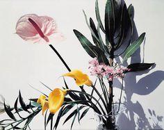 Nobuyoshi Araki, Flowers series, 1997 #photo #araki