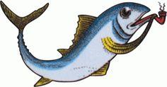 tumblr_lbd2rekuJG1qzw9h4o1_500.gif (Immagine GIF, 500x261 pixel) #fish #maruzzella