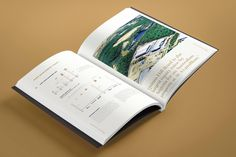 #diecut #Gold #black #goldfoil #metallic #Pantone#AnnuralReport #publication #design #minimal #annual report