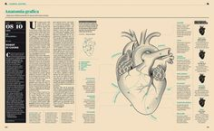 Franchi | Gridness #infographic #spread #illustration #muzzi #franchi #magazine #francesco