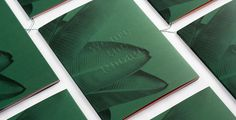we are the rhoads magazine publishing editoral design graphic leaf green palm beautiful designer kati mindsparklemag designblog