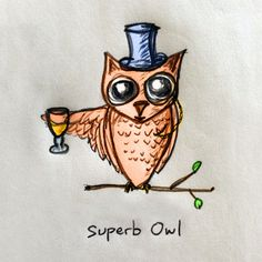 Superb Owl #illustration #bowl #owl #super