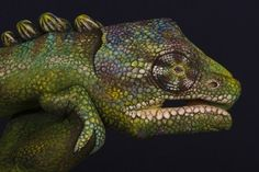 Guido Daniele | Art #chameleon #drawing #hand #painting