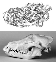 Wolf skull - abstract drawing