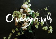 Overgrowth #photography #typography