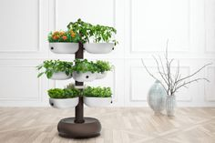 The Taiga smart garden tower, designed to be a compact garden, brings the simplicity of an organized garden into your home, enabling you to