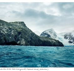 The Oldest Living Things in the World by Rachel Sussman #inspiration #photography #nature