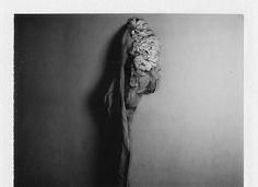 photo #polaroid
