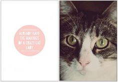 Jess Bright Design #photography #design #cats #typography
