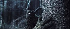 Gloam #grim #cgi #forests #dark #characters #cool