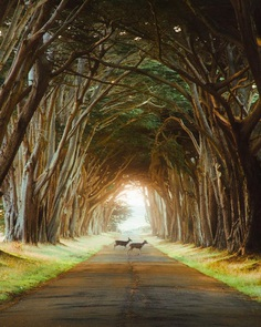 Dreamful Wanderlust: Adventure Photography by Karl 'Shakur' Ndieli