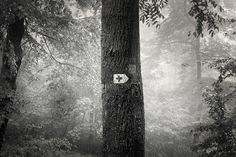 Mono on the Behance Network #photography #swiss