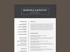 Free High End Resume Template with Clean Design