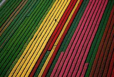 Aerial Photography by Yann Arthus-Bertrand