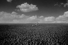 Pale Grain #family #image #photography #imaginary #beach #desert