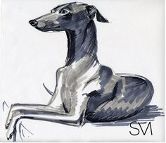 Rotulador 2009 | Silvia Mallofre #illustration #greyhound #dog