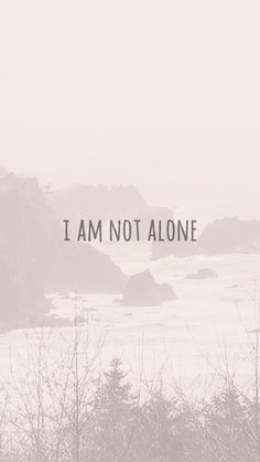 I AM NOT ALONE poster #inspiration #fonts #prints #photography #posters #typography
