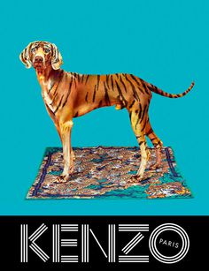 kenzo_fw13_campaign_3