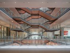 Whitlle School di Shenzen by Renzo Piano Building Workshop