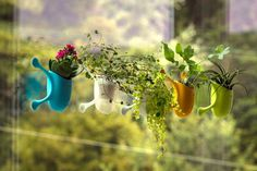 Say hello to Livi, a cute #planter that will redefine the way you experience #indoor #planting.