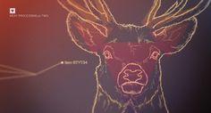 Shrani.si - Brezplačna spletna shramba za vaše slike - fetis3.jpg #infographic #reindeer #moose #illustration