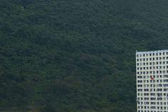 diestro-4 #hong #photography #kong