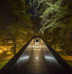 treesnakehouse-14