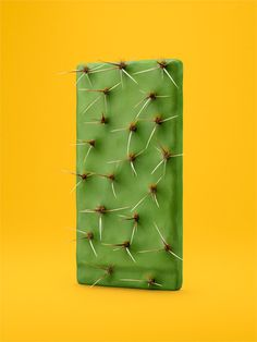 Have a Nice Day #cactus #yellow #green
