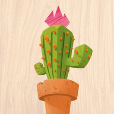 Puna by Gonzalo Ares Villafañe #illustration #cactus