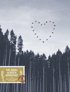 Brian Danaher #stamp #advantage #sky #alberta #gig #the #birds #rural #poster #trees