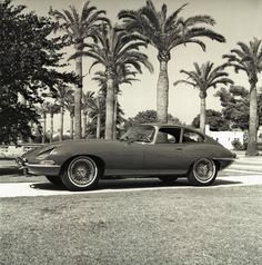 1964 Jaguar XKE on driveway ... in Los Angeles, CA 1964 | Flickr - Photo Sharing! #bw #los #automobile #1960s #car #angeles #jaguar