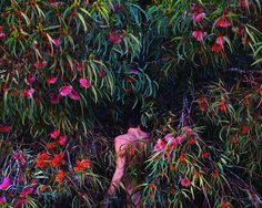 Jungle: Painterly Fine Art Portraits by Itamar Freed