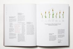 moodley brand identityInvented by nature. Enhanced by New Frontier Group #editorial