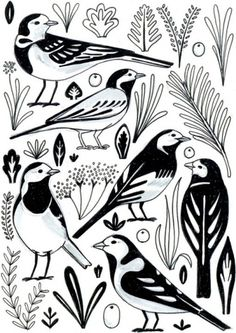 design work life » cataloging inspiration daily #birds