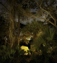 Night Photography by Frank Day #inspration #photography #art