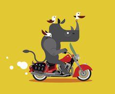 indian cycle whino.jpg #motorcycle #indian #birds #rhino #ride #drive #motor