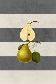 botanical stripes - pear by Her Art
