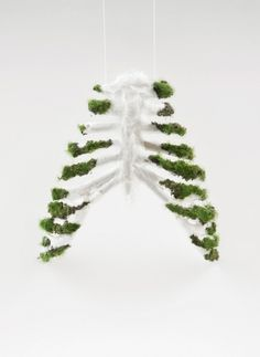 tumblr_lm20tfzjmn1qkpgx8o1_500.jpg 497×680 píxeis #pulmo