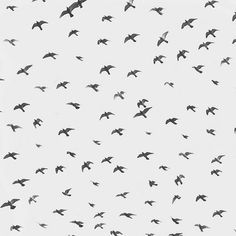 "Image Spark Image tagged ""comme ci"", ""pattern"", ""nature"" dmciv #birds"