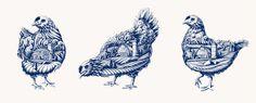 BLUE GOOSE PURE FOODS   Flavio Carvalho   graphic design / art direction