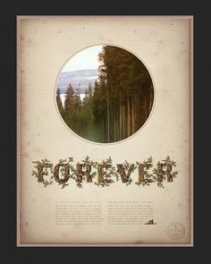 Eastern Design Bureau #muir #wood #forever #sierra #forest