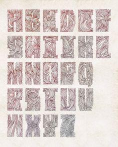 Recent Studies on Illustration Served #illustration #typography