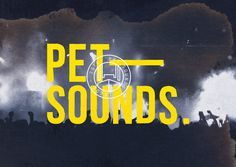 pet sounds #yellow #design #graphic #identity #logo